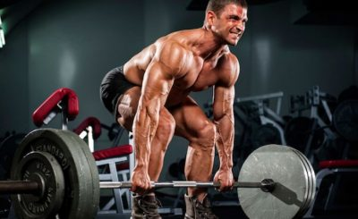 Presenting a Weightlifting Program for Starting Body Builders